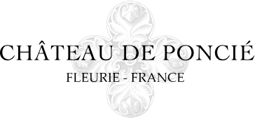 chateaudeponcie-logo